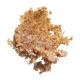 e.l.f. Lip Exfoliator Эксфолиатор для губ «Brown Sugar»